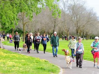 Bark for Life walkers